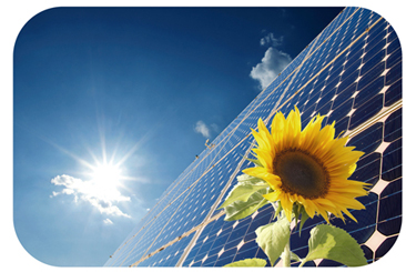 Solar Panel with Flower